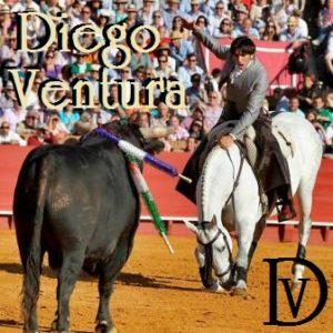 SEVILLA. 14.4.13. Corida de la feria de Abril de Sevilla. Diego Ventura como unico rejoneador. FOTO: J.M.SERRANO. ARCHSEV J.M.SERRANO